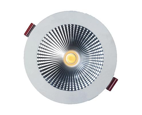 Ozone LED downlight